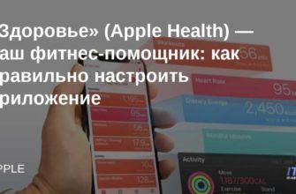 «Здоровье» на iPhone: как настроить и пользоваться приложением  | Яблык