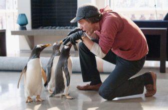 Пингвины мистера Поппера (2011): отзывы о фильме, обзоры, рецензии критиков, трейлер - Мегакритик
