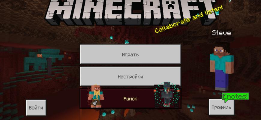 Minecraft - Pocket Edition v1.17.11 for iOS