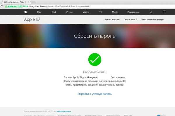 Просмотр фото и видео на iPad - Служба поддержки Apple