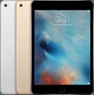 Первый взгляд на iPad mini (2021): идеал среди компактных планшетов - Rozetked.me